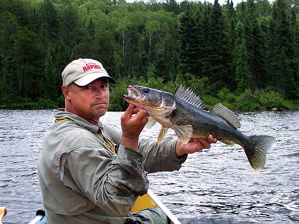 About darrel brauer fishing the boundary waters quetico for Boundary waters fishing